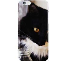 Sir Lola Beanz iPhone Case/Skin
