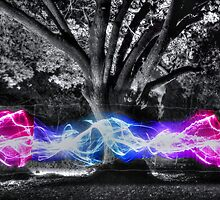 Traveling Electricity HDR by Vicki Spindler (VHS Photography)