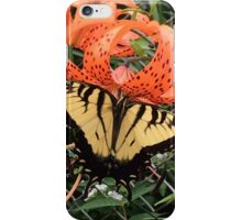 Butterfly on a Tiger Lily iPhone Case/Skin