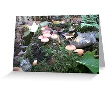 Mushroom Village Greeting Card