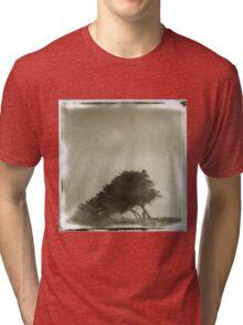 FALLEN KODAMA Tri-blend T-Shirt