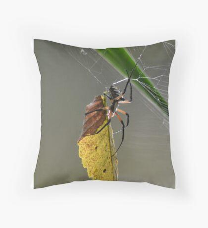 Zipper spider  Throw Pillow