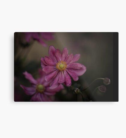 Blume - Flower Metal Print