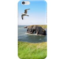 Virgin rock seagull in an updraught iPhone Case/Skin