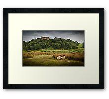 Sheep at Weobley castle Framed Print