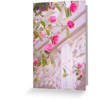 Pink Camellia Greeting Card