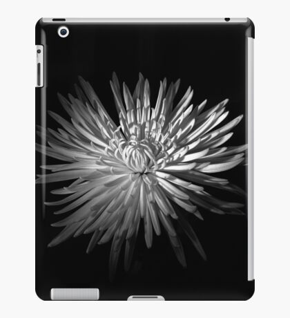 Spring Chrysanthemum iPad Case/Skin