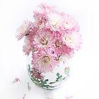 Pretty Pink Mums Still Life by LouiseK