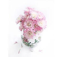 Pretty Pink Mums Still Life Photographic Print