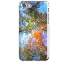 Indian Brook, Essex, Vermont iPhone Case/Skin