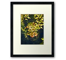 For everything there is a season, Ecc. 3:1 Framed Print