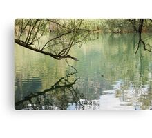 lake scape Canvas Print