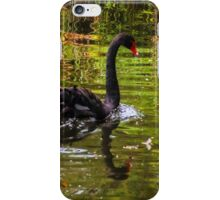 Black Swan. iPhone Case/Skin