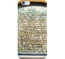 STONE WALLED? iPhone Case/Skin