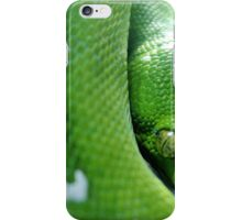 Green Tree  Python iPhone Case/Skin