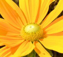 Happy Yellow Flower Sticker