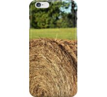 Monument Meadow iPhone Case/Skin