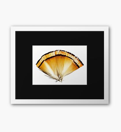 Fans and Followers Framed Print