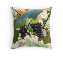 grape and vineyard in spring Throw Pillow