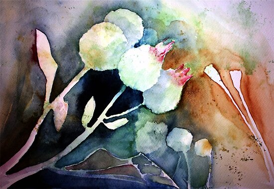 dried flowers by Claudia Dingle