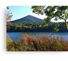 Sharp Top Mountain Canvas Print