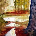 the secret place by Claudia Dingle