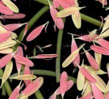 Petals & Stems Sticker