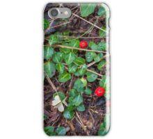Partridge Berry  iPhone Case/Skin