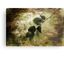 A Little Nature Metal Print