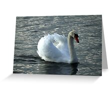 swan on the lake Greeting Card