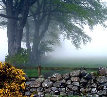 Mists of time by Stuart  Fellowes