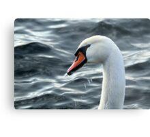 swan on the lake Metal Print