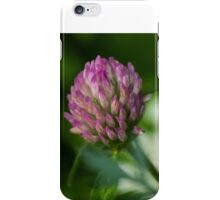 Summers Colors iPhone Case/Skin