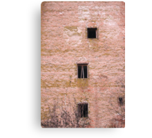 old  walls of the castle Canvas Print