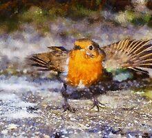 Dancing Robin by Graham Prentice