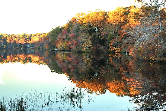 Lakeside, South County by Barry Doherty