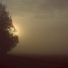 morning has broken.. by Jean Poulton