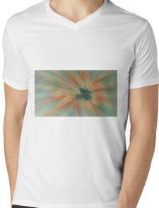 rose carriage sale Mens V-Neck T-Shirt