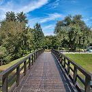Bridge by Željko Malagurski