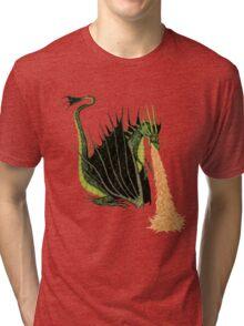 Fire Breathing Dragon Tri-blend T-Shirt
