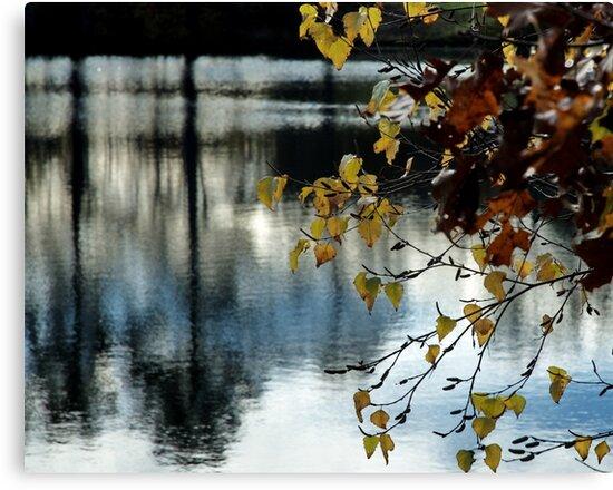 Riverbend Farm by Barry Doherty