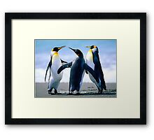 Friendship Penquins Framed Print