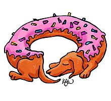 Doughtshund with sprinkles Photographic Print