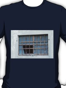 detail of ruined house T-Shirt