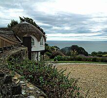 Umbrella Cottage by lynn carter