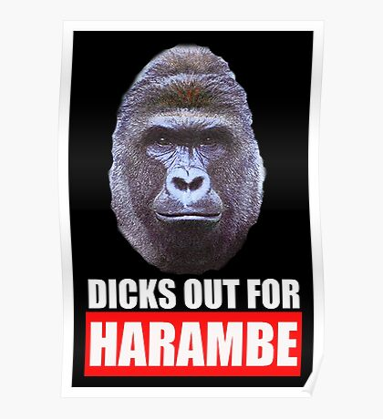 dicks out for harambe Poster