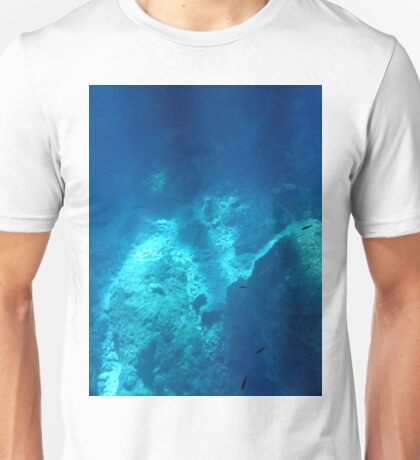 Beauty In The Clear Water Unisex T-Shirt