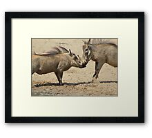 Warthog - Knockout Power from Africa Framed Print