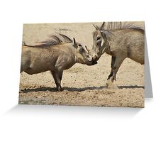 Warthog - Knockout Power from Africa Greeting Card
