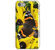 Vanessa Atalanta on Rudbeckia iPhone Case/Skin